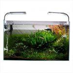 Aquael Plafonnier Leddy Smart 2 Blanc Sunny pour Aquariophilie 6 W 6500°K de la marque AquaEl image 3 produit