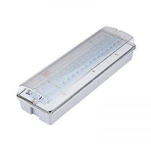 Biard - Lampe de Secours 7,5W - Éclairage Sécurité Industriel IP65 de la marque Biard image 0 produit