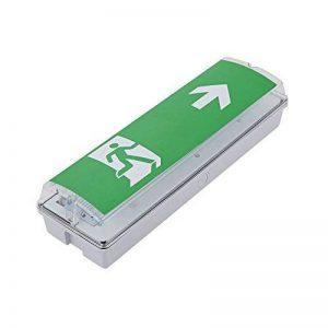 Biard Lumière Sortie de Secours LED Flèche Droite 7,5W Bloc Rectangulaire de la marque Biard image 0 produit