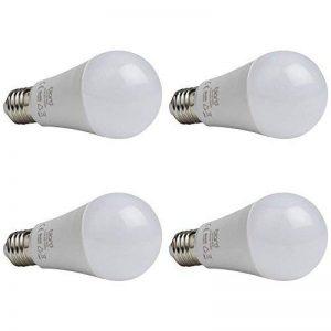 Biard - Pack de 4 Ampoules LED E27 12W - Blanc Froid - Dimmables de la marque Biard image 0 produit