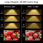 Bomcosy Lot de 10 Ampoule LED GU5.3 MR16 12V 5W 3000K Blanc Chaud 50W Halogène Spot équivalent 420LM Angle de Faisceau de 35° Non Dimmable de la marque Bomcosy image 4 produit