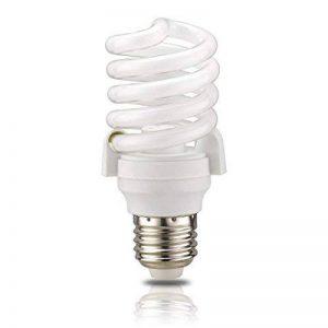britools Lampe Basse Consommation E27, 20.0W, lumière froide 6400K de la marque BriTools image 0 produit