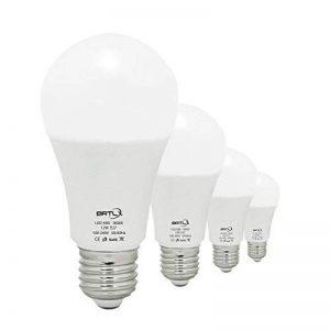 BRTLX 12W E27 Ampoule LED Blanc Chaud 3000K A60 100 Watt Ampoules à incandescence Équivalent Angle De faisceau De 200 Degrés 1080Lm Non-Dimmable Givré 4-Pack de la marque BRTLX image 0 produit