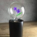 DarkSteve - Violet - ampoule Vintage - Edison Style G80 E27 à vis à incandescence ampoules décoratives #1 cadeau Unique de la marque DarkSteve® image 3 produit