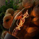 E14 Ampoule Vintage, Elfeland 25W Ampoule Bougie Antique Filament de Tungstène Retro Lampe Décorative 2200K Lumière Blanc Chaud pour Cafés Cuisines Chambres Restaurants-3 Packs de la marque Elfeland image 1 produit