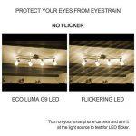 Eco.Luma Ampoule LED G9, 4W Equivalent 28W 33W 40W Lampe Halogène, 410LM, Blanc Chaud 3000K, AC100-265V, NON-Dimmable, Culot G9 Standard (Lot de 5) de la marque Eco.Luma image 3 produit