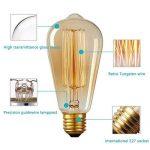 Edison Ampoule , GogoTool E27 2700-2900K Dimmable 40W ST64 Edison Lampe Vintage Ampoule Décorative Antique Filament Rétro - 6 Pack de la marque GogoTool image 1 produit