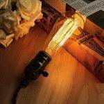 Edison Ampoule halogène E27 à Incandescence, Kakanuo ST64 Ampoule Vintage 60W 220V, Lampe Tungstène Décoration Classique, Ampoule Filament Antique Dimmable Blanc Chaud 2200k (Lot de 4) de la marque Kakanuo image 2 produit