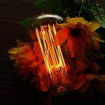 Elfeland Edison Ampoule Vintage E27 40W Ampoule Incandescence Décorative 2200K Filament de tungstène Rétro Lumière Blanc Chaud Idéale pour Salon Café Lustres Pafonds Murs Modèle ST58-3 Packs de la marque Elfeland image 1 produit