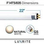 equivalence lumen watt TOP 6 image 2 produit