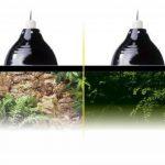 Exo Terra PT2052 Glow Light/ Reflector, Small, 14 cm de la marque Exo-terra image 2 produit