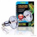 Exoterra Ampoule Halogène Basking Spot pour Reptiles et Amphibiens 75 W de la marque Exo terra image 2 produit