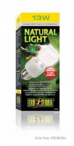 Exoterra Ampoule Reptiglo Fluocompact 2,0 pour Reptiles et Amphibiens 13 W de la marque Exo terra image 0 produit