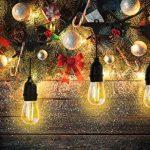 Extérieur Guirlandes Lumineuses, iEGrow 15 Mètres LED Imperméabiliser Connectable Chaîne de lumières 15 E27 pont d'Edison Ampoules Rétro pour Porche Deck Taverne Patio Jardin Fête de la marque iEGrow image 1 produit