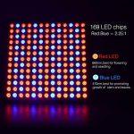 fabricant ampoule led TOP 5 image 3 produit