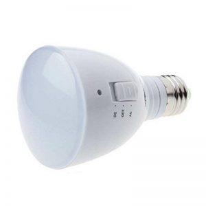 FEITONG 4W E27 85-265V 24 LED Rechargeable D'urgence ampoule Lampe de Poche de la marque FeiTong image 0 produit