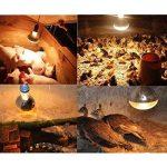 Gazechimp 2pcs Lampe Emetteur de Chaleur Infrarouge Ampoule en Céramique pour Reptile - E27 - 250W 275W de la marque Gazechimp image 1 produit