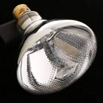 Gazechimp 2pcs Lampe Emetteur de Chaleur Infrarouge Ampoule en Céramique pour Reptile - E27 - 250W 275W de la marque Gazechimp image 4 produit