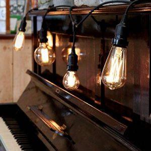 Guirlande Lumineuse Suspensions Câble Noir avec 10 Ampoules Vintage à Filament - Raccordable - 10 Mètres de la marque Festive Lights image 0 produit