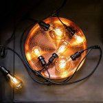 Guirlande Lumineuse Suspensions Câble Noir avec 10 Ampoules Vintage à Filament - Raccordable - 10 Mètres de la marque Festive Lights image 1 produit