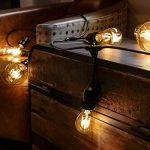 Guirlande Lumineuse Suspensions Câble Noir avec 10 Ampoules Vintage à Filament - Raccordable - 10 Mètres de la marque Festive Lights image 3 produit