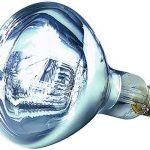 HELIOS - Basse-cour - Chauffage - Lampes - Ampoules - Ampoule infrarouge à vis blanche 250 W - E27 de la marque Helios image 1 produit