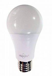 hiralite LED Lampe Lumière du jour plein spectre 11W 5000K/ra95, intensité variable. Flimmer libre brillante lumière de grande qualité la technologie innovante. Idéal pour remplacer ampoule 60W. de la marque HIRALITE image 0 produit