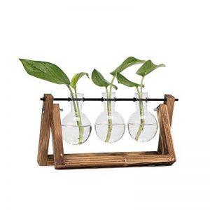 Hyindoor ampoule Vase vintage avec support en bois et métal Tige rotatif pour hydroponie plantes Bureau en verre Pot de fleurs pour décoration de la maison de la marque Hyindoor image 0 produit