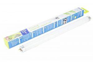 Interpet Tube Fluorescent Éclairages T8 pour Plantes d'Aquarium Tropical 15 W 45 cm 18 inches de la marque Interpet image 0 produit
