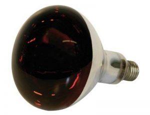 Kerbl 22245 Standard Ampoule infra rouge 250 W de la marque Kerbl image 0 produit