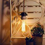 KINGSO 10pack E27 Ampoule Edison à Incandescence Vintage ST64 60W 220V Lampe Tungstène Décorative Ampoule Filament Classique Antique Dimmable Blanc Chaud de la marque KINGSO image 2 produit