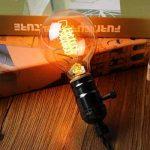 KINGSO 2 Pack E27 Edison Ampoule à Incandescence Vintage Globe Lampe Filament Rétro G80 60W 220V Blanc Chaud Idéal pour Décoration Luminaire Antique de la marque KINGSO image 1 produit