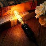 KINGSO 3 Pack E27 Edison Ampoule à Incandescence Vintage Lampe Filament Rétro T45 40W 220V Blanc Chaud Idéal pour Décoration Luminaire Antique de la marque KINGSO image 1 produit