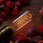 KINGSO 3 Pack E27 Edison Ampoule à Incandescence Vintage Lampe Filament Rétro T45 40W 220V Blanc Chaud Idéal pour Décoration Luminaire Antique de la marque KINGSO image 2 produit