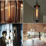 KINGSO 3 Pack E27 Edison Ampoules à Incandescence Vintage Lampe Filament Décorative T30 40W 220V Blanc Chaud Idéal pour Nostalgie et Eclairage Antique de la marque KINGSO image 4 produit