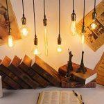 KINGSO 6 Pack E27 Edison Ampoules à Incandescence Vintage Lampe Filament Décorative T30 40W 220V Blanc Chaud Idéal pour Nostalgie et Eclairage Antique de la marque KINGSO image 3 produit