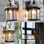 KINGSO 6 Pack E27 Edison Ampoules à Incandescence Vintage Lampe Filament A19 40W 220V Blanc Chaud Idéal pour Nostalgie et Eclairage Antique de la marque KINGSO image 2 produit