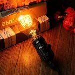 KINGSO 6 Pack E27 Edison Ampoules à Incandescence Vintage Lampe Filament A19 40W 220V Blanc Chaud Idéal pour Nostalgie et Eclairage Antique de la marque KINGSO image 3 produit