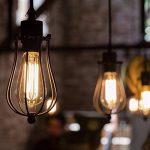KINGSO E27 Ampoule Edison Filament Vintage Lampe Tungstène Décorative ST64 40W 220V Ampoule à Incandescence Classique Antique Blanc Chaud de la marque KINGSO image 2 produit