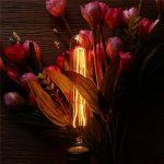 KINGSO E27 Edison Ampoules à Incandescence Vintage Lampe Filament Décorative T30 40W 220V Blanc Chaud Idéal pour Nostalgie et Eclairage Antique de la marque KINGSO image 2 produit