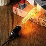 KINGSO E27 Edison Ampoules à Incandescence Vintage Lampe Filament Décorative T30 40W 220V Blanc Chaud Idéal pour Nostalgie et Eclairage Antique de la marque KINGSO image 1 produit