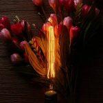 KINGSO E27 Edison Ampoules à Incandescence Vintage Lampe Filament T30 40W 220V Blanc Chaud Idéal pour Nostalgie et Eclairage Antique de la marque KINGSO image 1 produit