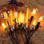 KINGSO E27 Edison Ampoules à Incandescence Vintage Lampe Filament T30 40W 220V Blanc Chaud Idéal pour Nostalgie et Eclairage Antique de la marque KINGSO image 2 produit