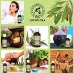 L'huile Essentielle D'eucalyptus 50ml - Huile Essentielle 100% Naturelle - Eucalyptus Pure et Naturelle - de AROMATIKA de la marque Aromatika image 3 produit