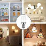 LAKES E14 LED Ampoule pour Réfrigérateur, 2W E14 Lumière (Equivalent à Halogène 25W), Congélateur Lampe 6000 K (Blanc Froid) 5 packs de la marque LAKES image 2 produit