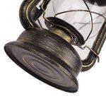 Lampe Abat-jour Éclairage Cage en fer Vintage Applique Murale Lustre Vintage Retro Filament Edison E27 (110-240V Ampoule non incluse) de la marque Zyurong® image 3 produit