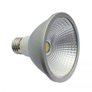 Lampe E27LED PAR 3010W spot blanc neutre 4000K Ampoule Par30COB ampoule de la marque LED24.cc image 0 produit