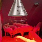 lampe rouge chauffante TOP 1 image 1 produit