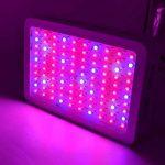 lampe spectrale TOP 7 image 4 produit