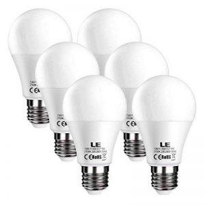 LE Lighting EVER Ampoules LED E27, 9W 800lm, Blanc Chaud 2700K, Equivaut à Ampoule Incandescente 60W, Non-Dimmable, Lot de 6 de la marque Lighting EVER image 0 produit